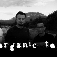 Intervju: Organic Toy