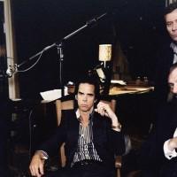 Nick Cave dolazi na EXIT!