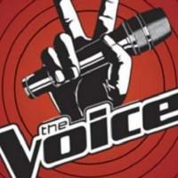 The Voice: Novi show u kom se takmiče pevači na pomolu?