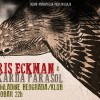 Chris Eckman i Rykarda Parsol by Poster za koncerte u Srbiji