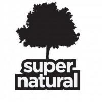 Predstavljen program ovogodišnjeg Supernatural-a