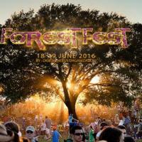 Prvi Forest Fest!