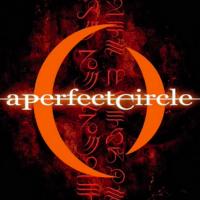 Izgleda da novi A Perfect Circle