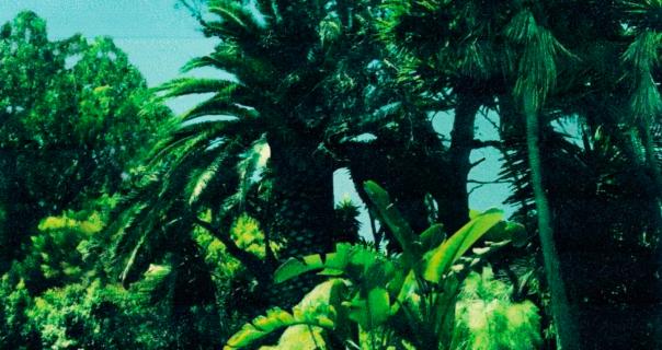 Calvin Harris, Frank Ocean i Migos u pesmi Slide