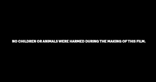 Harry Styles nije povredio ni jedno dete tokom snimanja spota