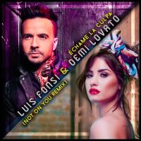 Demi Lovato i Luis Fonsi napravili englesku verziju Échame La Culpa
