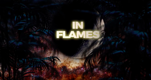 David Guetta i Sia u novoj pesmi Fireflies