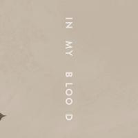 Shawn Mendes predstavio DVE nove pesme