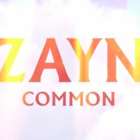 Zaynov album ima čak 27 pesama