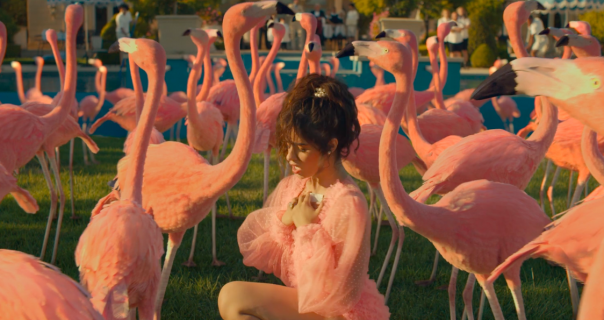 Camila Cabello upravo objavila najzabavniji spot godine