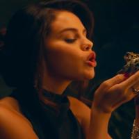 Da, Selena ljubi žabe u novom spotu